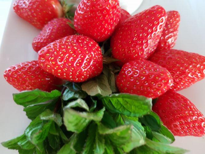 fraises-confiture-verdon